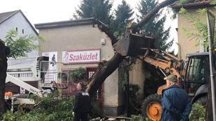 Vihar után rend: így takarítják el a romokat Nyíregyházán