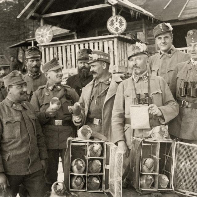 Ők voltak az I. világháború tollas katonái: a postagalambok több száz kilométerre vitték a titkos üzeneteket