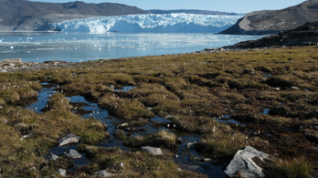 Ha Grönland jege eltűnik, hét méterrel emelkedhet a tengerszint