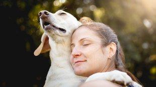 Elfordítja a fejét kutyád miközben megöleled? Így jelzi, hogy utálja
