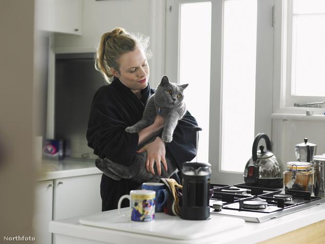 Van, akinek nem adatik meg otthon a macska és a kávé egyszerre