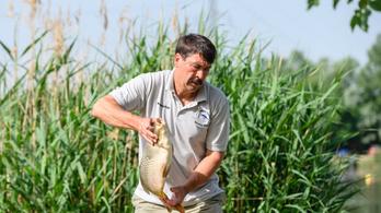 Áder János: 30-40 év múlva esedékes lesz a Balaton vízpótlása
