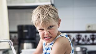 Amikor a gyereked azt üvölti: utállak! Tudnod kell, hogy ez mit jelent, és jól kell kezelni