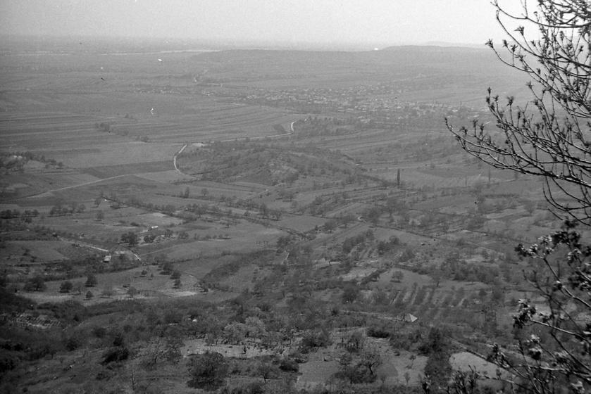 Kilátás Szentendre és Pomáz határától az 1940-es években