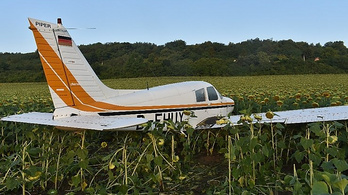 Napraforgótáblában landolt egy sportrepülőgép Borsodban