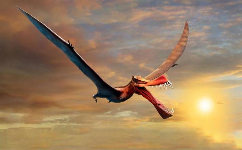 pteroszaurusz