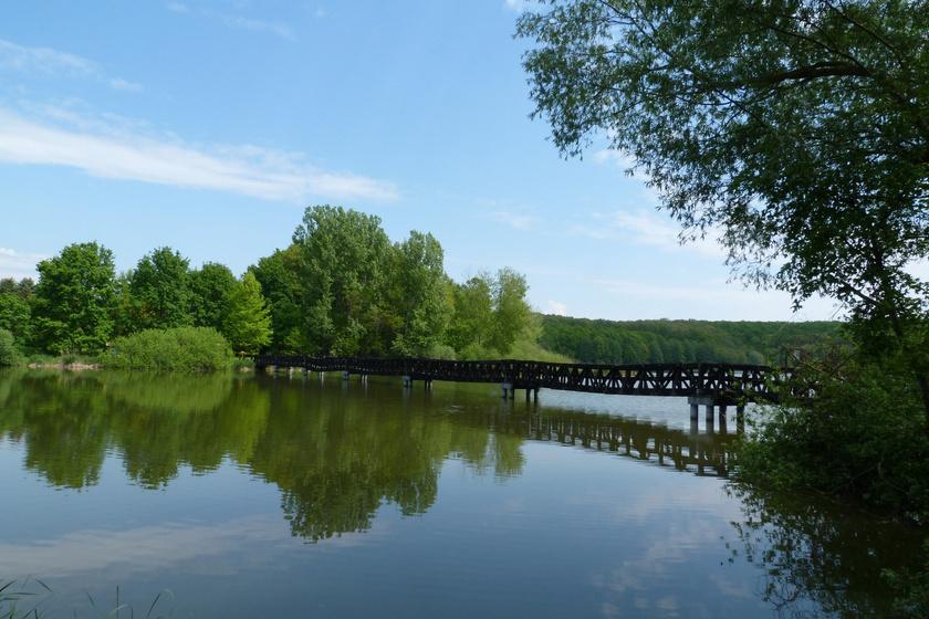 A gyönyörű Deseda-tó erdők, mezők ölelésében fekszik: fürödni is lehet az ország leghosszabb mesterséges tavában