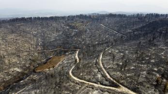 45 fok, kegyetlen tüzek – 13 éve nem volt példa ekkora pusztításra