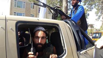 Az al-Kaida visszatérhet Afganisztánba