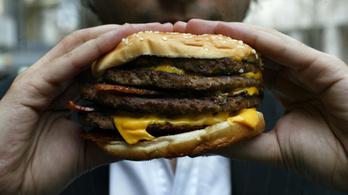 Így készül a Meki hamburgereinek húspogácsája