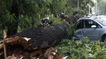 Itt az ítéletidő, fákat csavar ki és tetőket bont a vihar