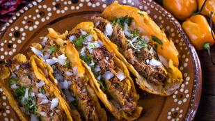 Padlizsános taco – egy  vegetáriánus változatban is finom mexikói fogás