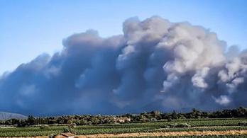 Súlyosbodik a helyzet, erdőtüzek pusztítanak Olaszországban és Franciaországban