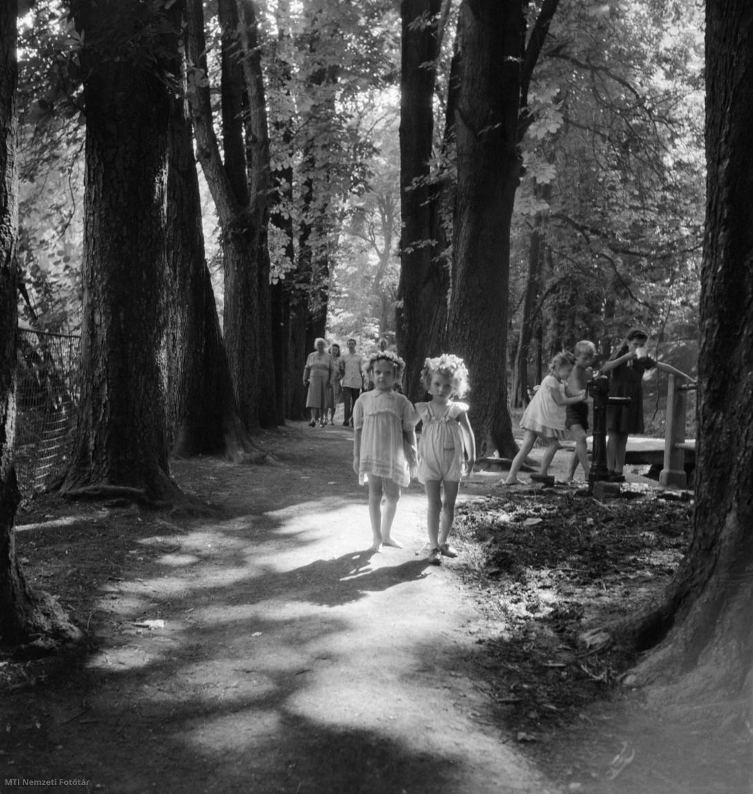 A Népjóléti Minisztérium üdültető programjában részt vevő gyerekek kirándulnak a Széchenyi-hegyen 1948. augusztus 8-án