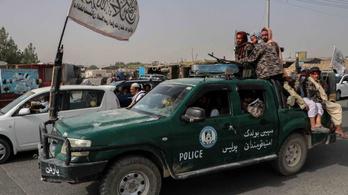 Tálibok szóvivője: Senkinek nem esik bántódása