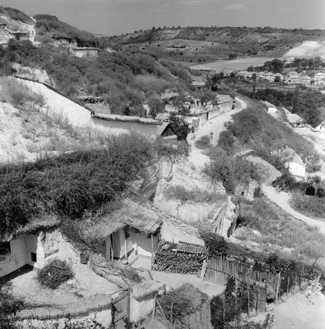 Noszvaj, 1964. augusztus 6. A település délkeleti részén, az egykori szegénysoron lévő barlanglakások. Az első lakások a XVII. század környékén jelenhettek meg, de tömegesen a XIX. század elején faragták ki, miután a kőkitermelés nyomán maradt vájatokat könnyen lehetett lakhellyé alakítani. 1930-ban hetven barlanglakásban 249 személy húzódott meg, és volt olyan időszak, hogy Noszvaj lakosságának harminc százaléka pincelakásban élt. A házak olyanok, mint egy klasszikus parasztház szobákkal, meszelt homlokzattal. Az udvaron lévő ólakat szintén puha riolittufából vájták ki