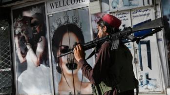 A tálibok evolúciója az egész világot meglepte