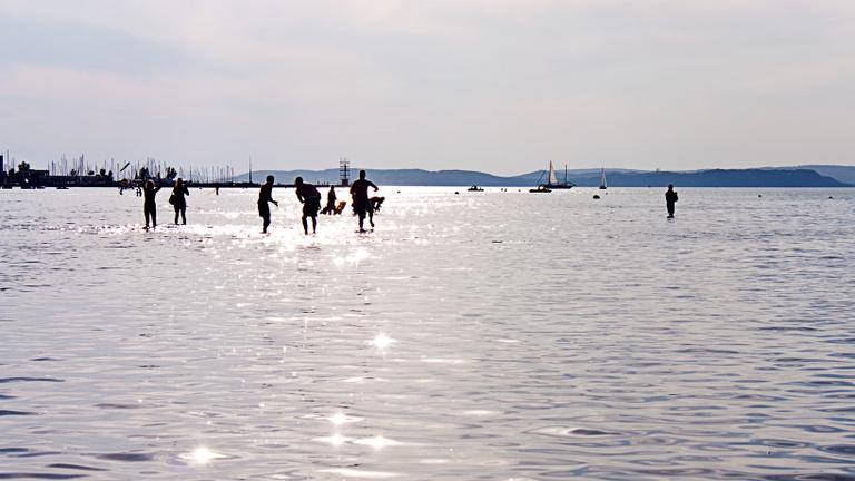 Bőrgyulladás, veseelégtelenség – ezek jöhetnek, ha nem fejezzük be a Balatonba vizelést