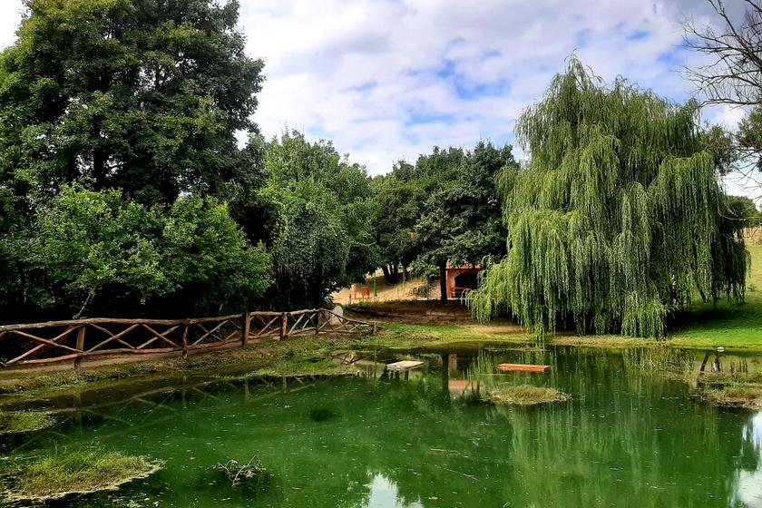 Patakokkal teli, mesebeli kis falu a Balaton-felvidéken: a gyönyörű Vászoly zöldellő völgyben fekszik