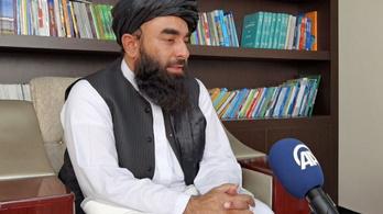 Hamarosan megjelenik a nyilvánosság előtt a tálibok legfőbb vezetője