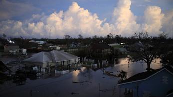 Eltűnt egy férfi, miután aligátor támadott rá a hurrikán által sújtott New Orleansban