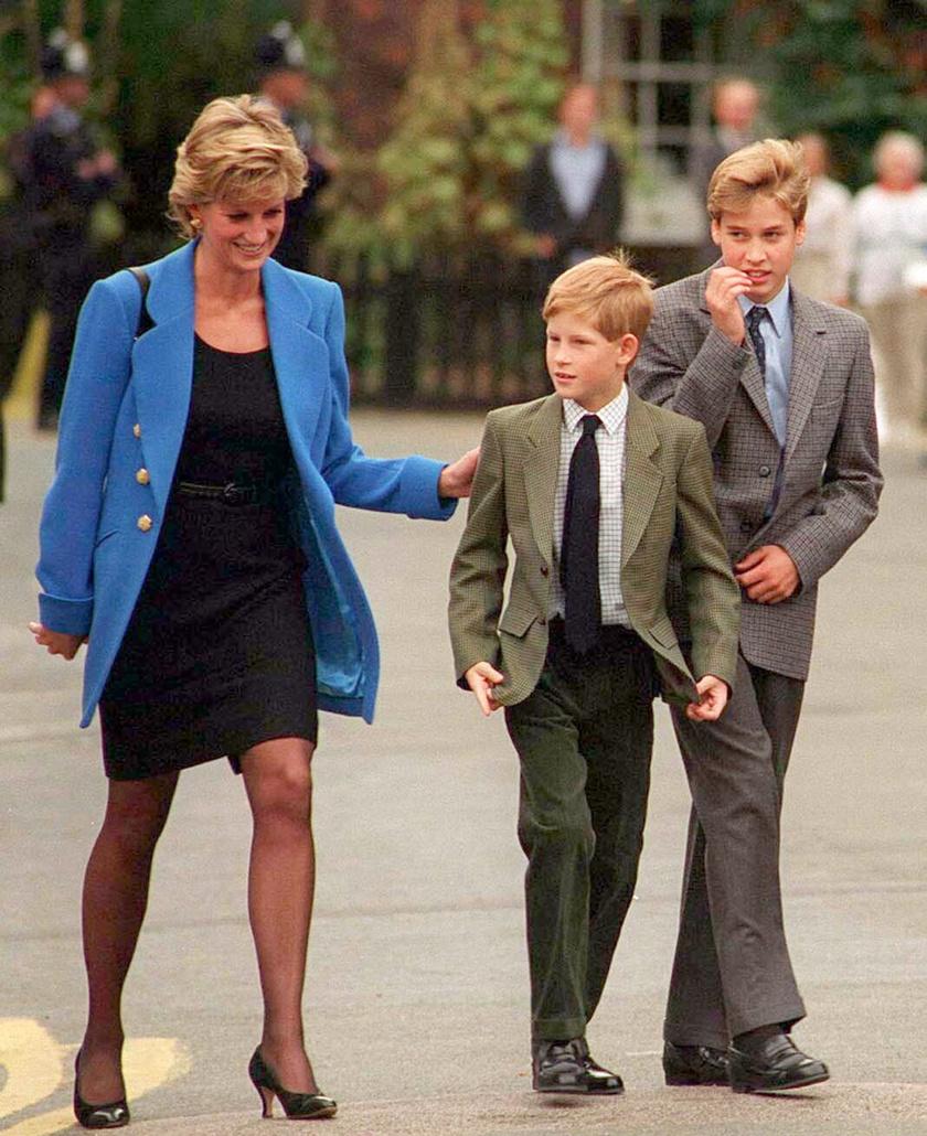Diana Amerikába vitte volna a fiait.