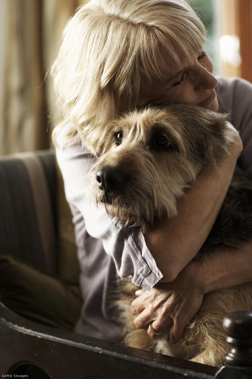 kutyák-élete2