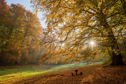eresztvény ősszel
