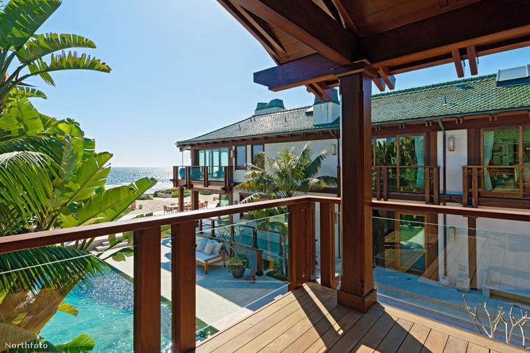 Az ingatlant és a telket különlegessé teszik a pálmafák és a trópusi virágok