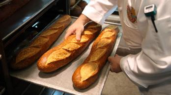 Drágul a kenyér, de a péksüti még inkább