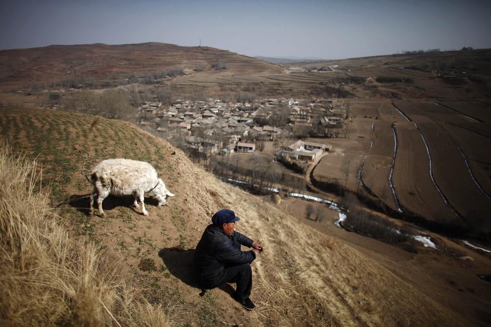 Egy idős kínai férfi állataival Gansu tartományban. A kínai vidék legnagyobb problémája, hogy nincs aki gondoskodjon az idősekről, mert a kevés születő gyerek is mind a városokban próbál boldogulni.