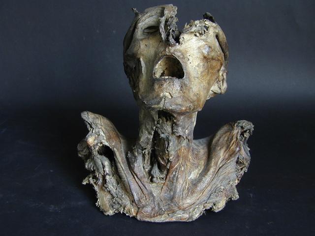 specimen-front-130205