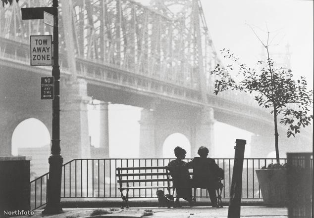 A legklasszikusabb New York-i filmkép Woody Allen Manhattan című filmjéből: Diane Keaton és Woody Allen a Queensboro Bridge-ben gyönyörködik