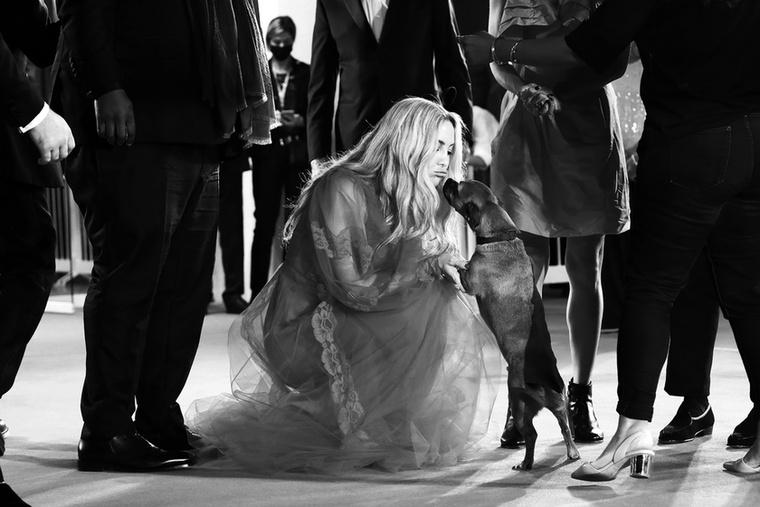 A híresség ezen a képen a film rendezőjének, Ana Lily Amirpournak a kutyáját simogatja