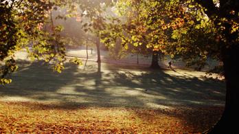 Már az ősz sem a régi, elbúcsúzhatunk a szép színektől
