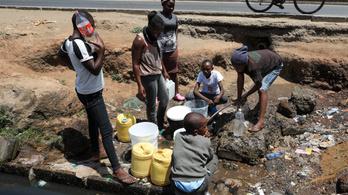 Nemzeti katasztrófahelyzetet hirdetett Kenya az aszály miatt