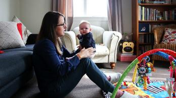Már a kismamák is dolgozhatnak szövetkezet tagjaként
