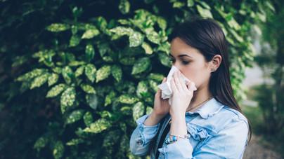 Immunerősítő táplálkozás és életmód, hogy elkerüld az őszi nyavalyákat
