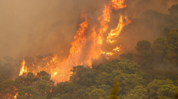 Lángolnak az erdők Málagában