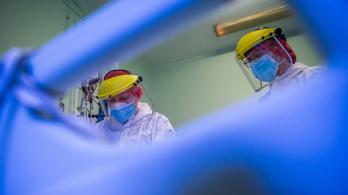 Koronavírus: négy beteg meghalt, egyre többen vannak lélegeztetőgépen