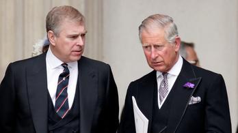 Újabb botrány a brit királyi családban