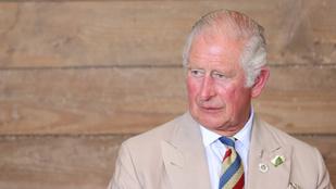 Károly herceg átírhatja az alkotmányt, hogy Erzsébet királynőt Vilmos kövesse a trónon