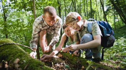 Okosabb vagy, mint egy ötödikes? – Természetismeretből tesztelheted magad