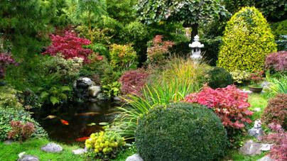 Japánkert otthon: ez kell ahhoz, hogy létrehozd a sajátodat