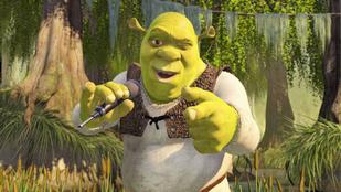 Barátnője Shrek-fétise miatt borult ki egy férfi az interneten
