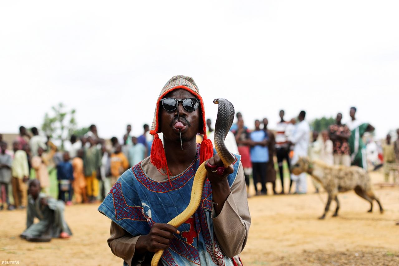 Abubakar Usaini átszúrt nyelvét mutatja, miközben egy kobrát tart kezében a gabawasai ünnepségen.