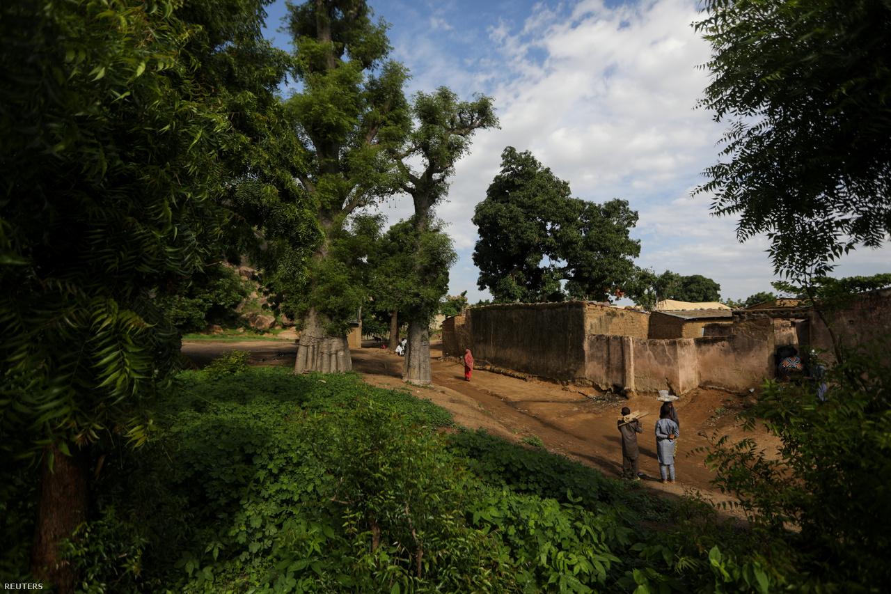 Ház a majomkenyérfák mellett. A döngölt sárból épült ház ad otthont Kawunak és állatainak.