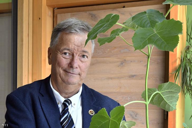 Steier József, a Sunwo Zrt. alapítója a smaragdfa felhasználási lehetőségeiről tartott sajtótájékoztatón a smaragdfa hibrid nemesítője, a Németh-fa Kft. bemutatótermében 2021. augusztus 24-én, az első Smaragdfa Fenntarthatósági Napon