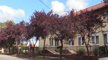 Gyermekpornográf felvételeket talált a rendőrség egy nógrádi háziorvosnál