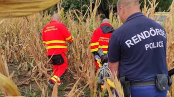 Eltűnt egy 79 éves férfi, a kukoricásban fekve találták meg